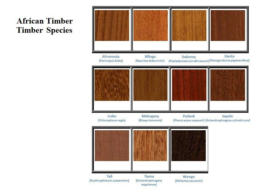 Timbers Visvaja
